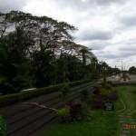 フィリピン大学デリマン3
